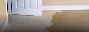 Water Damage Claim Public Adjuster Company