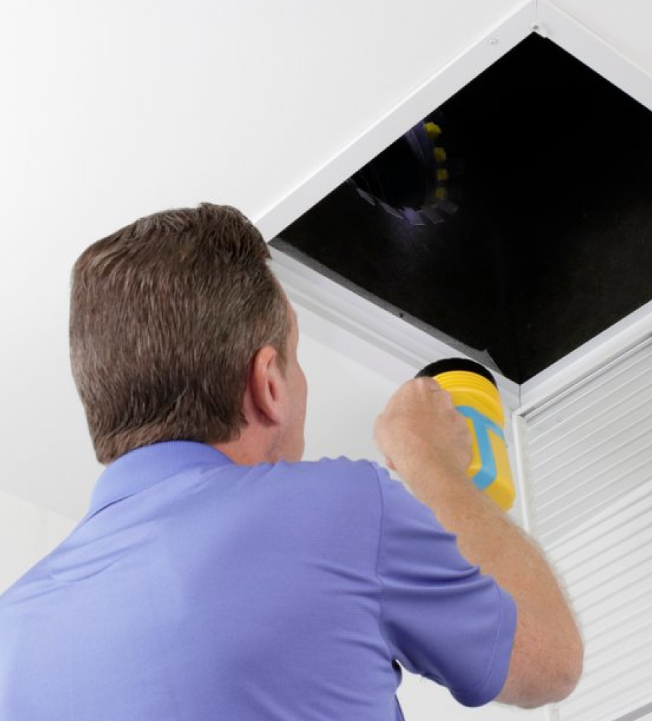 Mold in Commercial and Residential Properties